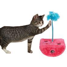 Savvy Tabby Rockin' Jabbers Cat Toy - Raspberry