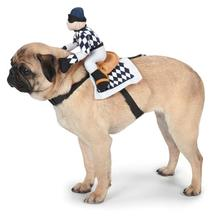 Show Jockey Saddle Dog Costume