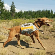 Singletrak Hydration Dog Pack by RuffWear - Orange Sunset