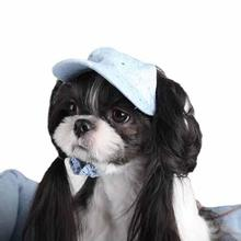 Skyline Dog Cap - Light Blue