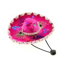Sombrero Dog Hat - Pink