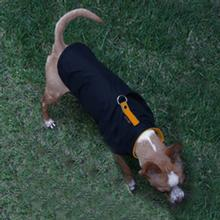 Sports Dog Vest by Gooby - Black/Orange