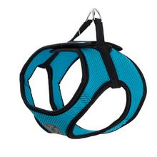 Step-in Cirque Dog Harness - Teal