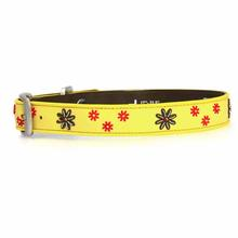 Sun Spot Daisy Daze Dog Collar