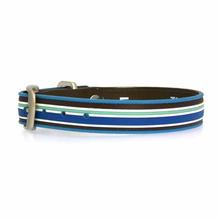 Tahitian Sky Classic Stripe Dog Collar
