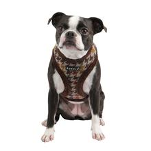 Tessell Dog Harness by Puppia - Brown