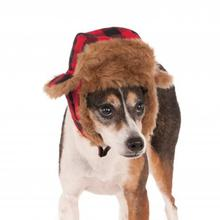 Trapper Dog Hat Costume