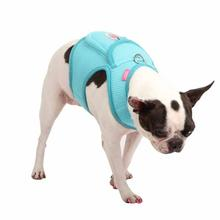 Vera Pinka Dog Harness by Pinkaholic - Aqua
