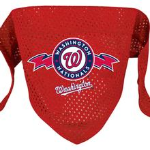 Washington Nationals Mesh Dog Bandana