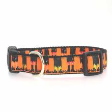 Witches Brew Dog Collar