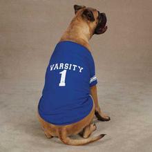 Americana Jersey Dog T-Shirt - Blue Varsity