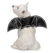 Zack and Zoey Bat Glow Wing Dog Harness Costume