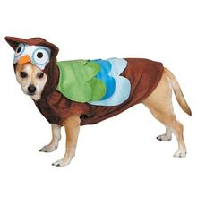 Cute Hoots Halloween Dog Costume