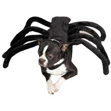 Grr-antula Dog Halloween Costume