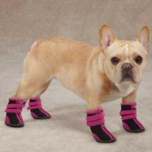 High Top Neoprene Dog Boots - Raspberry