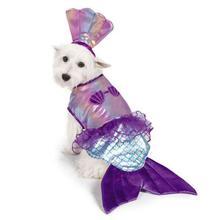 Zack and Zoey Iridescent Mermaid Costume