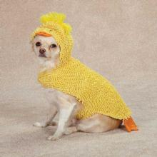 Just Ducky Halloween Dog Costume