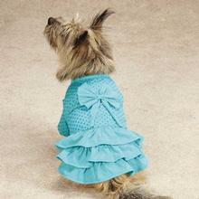 Zack & Zoey Polka Dot Ruffle Dog Dress - Bluebird