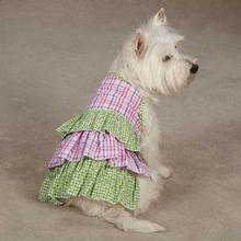 Zack & Zoey Summer Breeze Dog Dress - Green