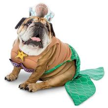 Zelda Mermaid Halloween Dog Costume
