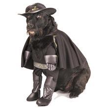 Zorro Dog Halloween Costume