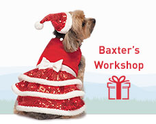 Baxter's Workshop