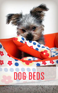 Shop All Dog Beds