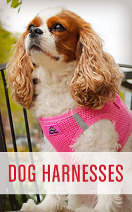 Shop All Dog Harnesses
