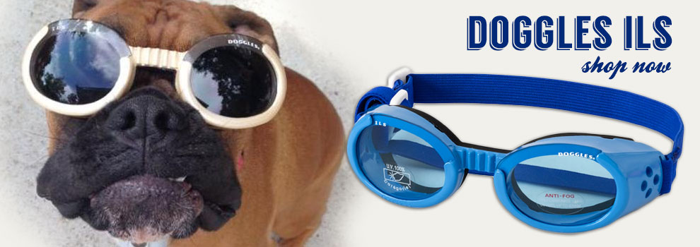 Shop All Doggles ILS!