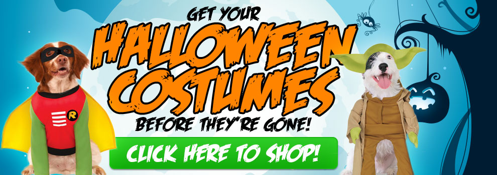 Get Ready for Halloween, Shop Costumes!
