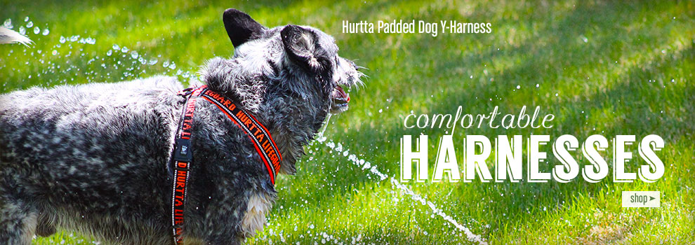 Shop Hurrta Padded Y Harnesses