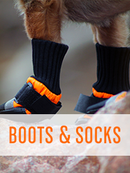 Shop All Dog Boots & Socks