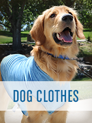 Shop All Dog Clothes
