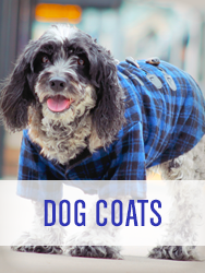 Shop All Dog Coats