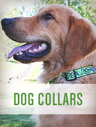 Shop All Dog Collars
