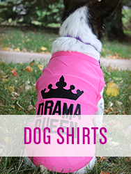 Shop All Dog Shirts
