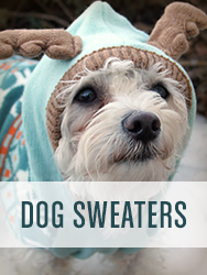 Shop All Dog Sweaters