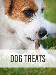 Shop All Dog Treats