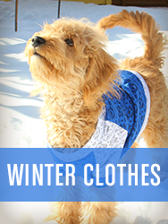 Shop All Winter Clothes