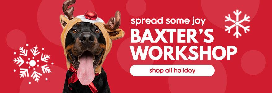 Baxter's Workshop